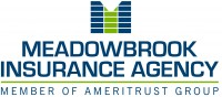 Meadowbrook Insurance Agency - The employee benefits broker and group health insurance advisor in Southfield